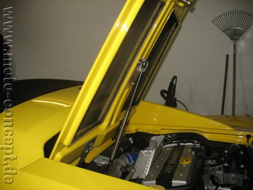 Motorhaubenlifter Speedster